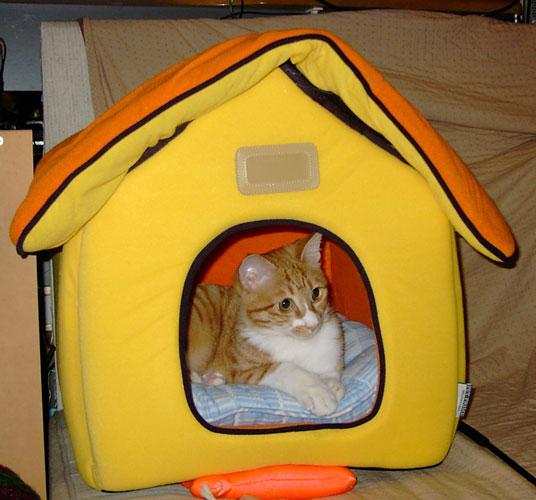 ハウス型ベッド